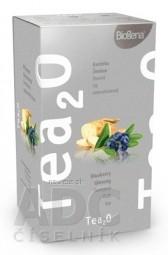 Biogena Tea2O Čučoriedka & Ženšen ovocný čaj 20x2,3 g (46 g)