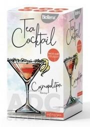 Biogena Tea Cocktail Cosmopolitan flavour bylinná zmes 20x2,5 g (50 g)
