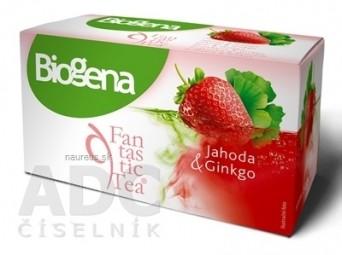 Biogena Fantastic Tea Jahoda & Ginkgo bylinný čaj (inov.2019) 20x2 g (40 g)