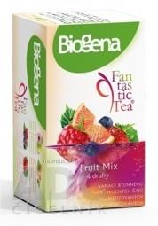 Biogena Fantastic Tea Fruit Mix 4 druhy po 5 vrecúšok, 1x20 ks