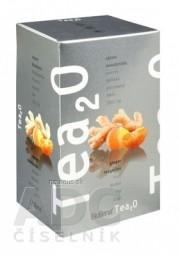Biogena Tea2O Zázvor & Mandarínka ovocno-bylinná zmes 20x2,5 g (50 g)