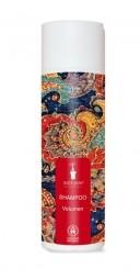 BIOTURM šampón volume - 200ml
