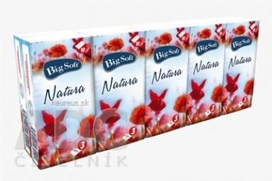 Big Soft Natura vreckovky hygienické 10x10 ks