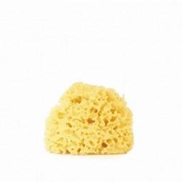 EatGreen Morská tráva - malá hubka