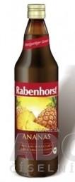 Rabenhorst Ananásová šťava 1x750 ml