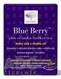 NEW NORDIC Blue Berry tbl 1x120 ks