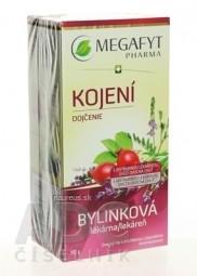 MEGAFYT Bylinková lekáreň DOJČENIE ovocný čaj 20x1,5 g (30 g)