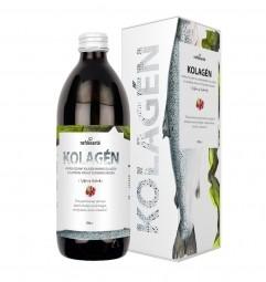 KOLAGÉN (hydrolyzovaný kolagén s elastínom, príchuť červeného hrozna 500 ml)