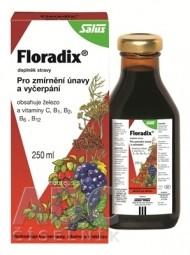 SALUS Floradix bylinný sirup 1x250 ml