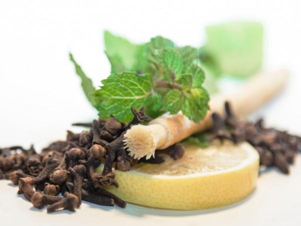 Prírodná zubná kefka Siwak Mäta
