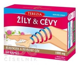 TEREZIA ŽILY & CIEVY
