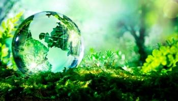 5 krát o ekologickom umývaní v umývačke