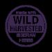 Wild Harvested Siberian Herbs - Zber divorastúcich bylín