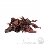 Dulse BIO 50 g Lifefood