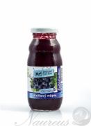 BIO Čučoriedkový smoothie 200 ml