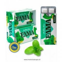 ELMA mastichové žuvačky mäta, dražé 10 ks