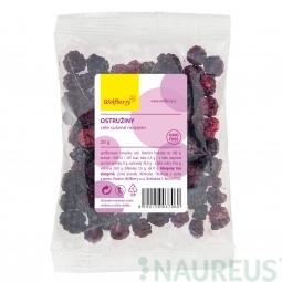 Černice lyofilizované 20 g Wolfberry