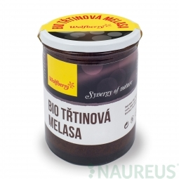 Trstinová melasa BIO 450 g Wolfberry *