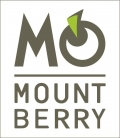 Mountberry