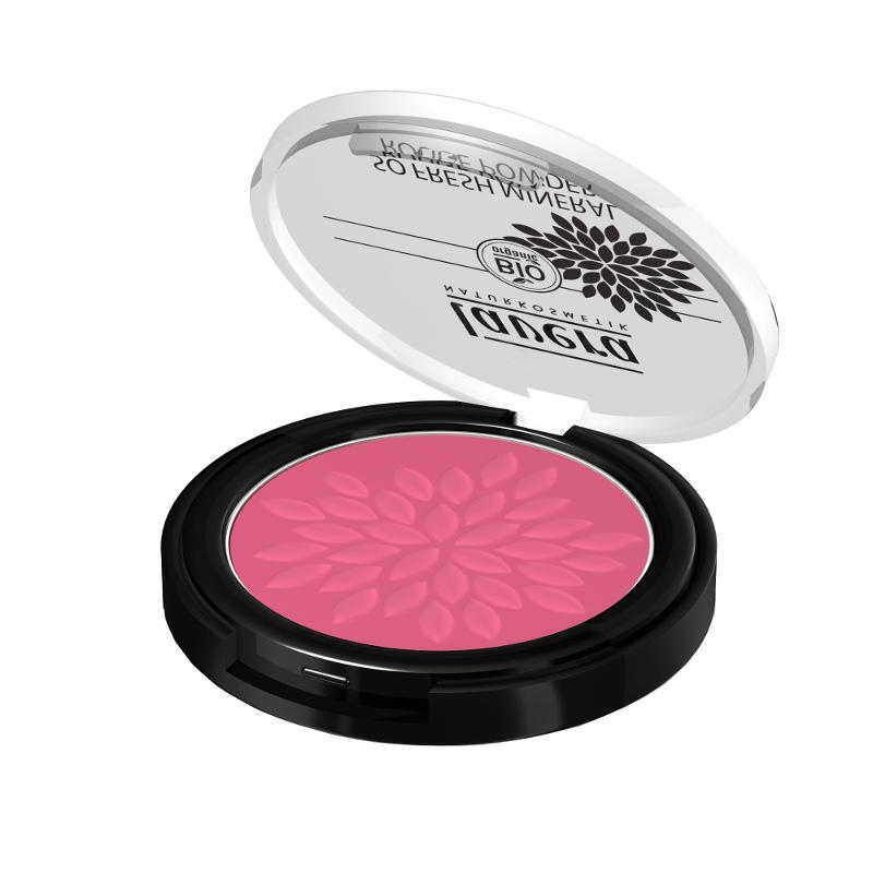 Tester Púdrová farba na líčka - 04 ružová harmónia 4,5G